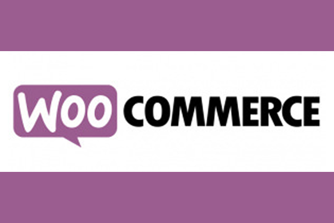 Top 4 WooCommerce Plugins To Improve Your Online Store